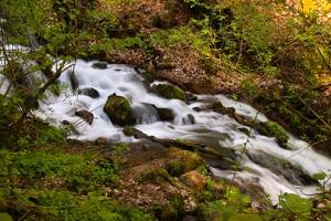 Ein natürlicher Flusslauf © EvrenKalinbacak/iStock/Thinkstock