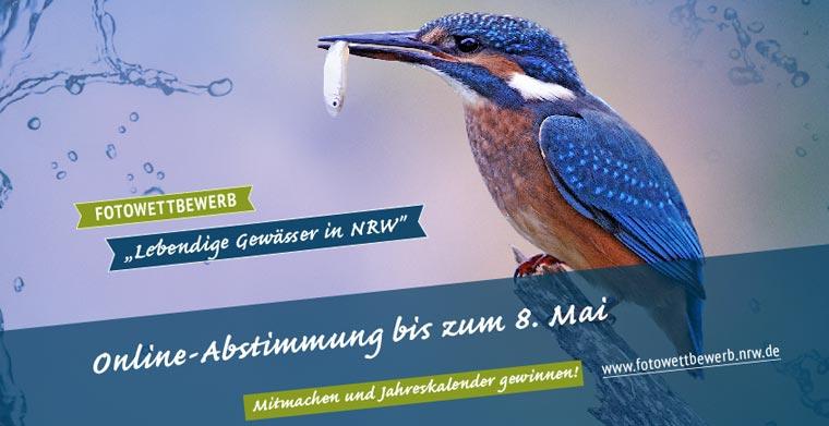 Fotowettbewerb in NRW zeigt lebendige Gewässer