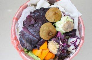 Mehr Aufklärungsarbeit für kompostierbaren Abfall gefordert