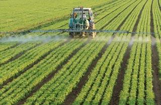 Bundesregierung gibt grünes Licht für Glyphosat