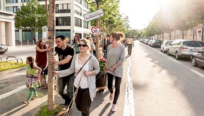 Die Wanderbaumallee zog 2013 durch die Straßen Münchens © Fotograf: Su Gin, Green City