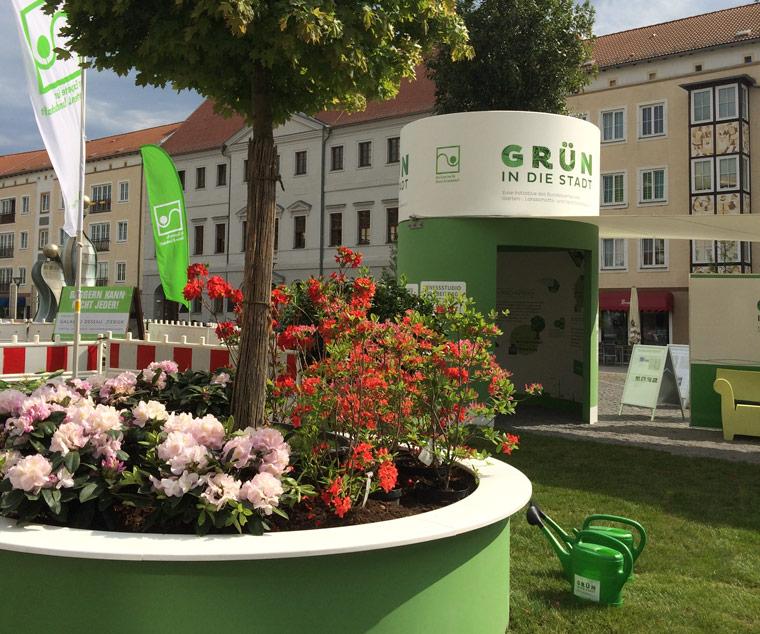 Grün in die Stadt