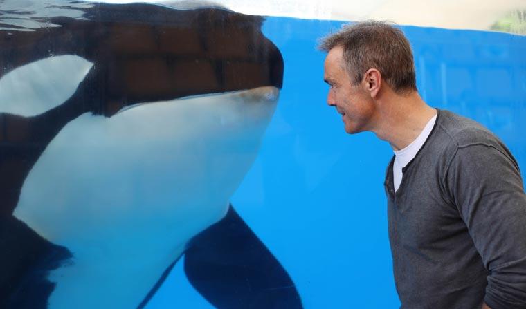 Der Schauspieler und Umweltaktivist Hannes Jaenicke begleitet aktuell Naturwissenschaftler und Forscher bei ihrer spannenden Arbeit mit Delfinen und Orkas.