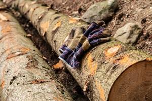 Holz Thünen-Institut