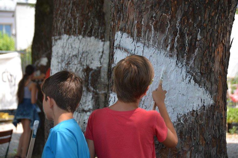 Münchner Schüler schaffen Naturkunstwerk
