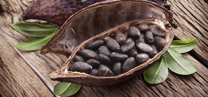 Kakao Nachhaltigkeit