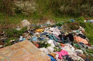 Müll im Wald © Julius Sucha/iStock/Thinkstock