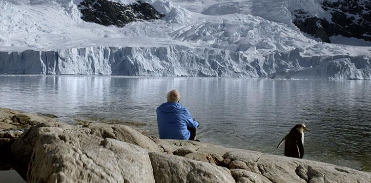 Wie geht es der Eiswüste Antarktis wirklich