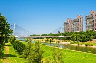 Pflanzaktion sorgt für mehr Grün in Mannheim