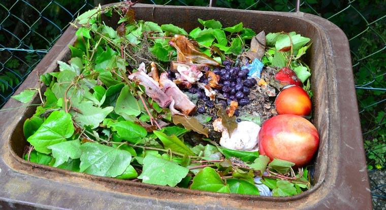 Eine neue Studie ergab, dass in Deutschland 210 kg Müll pro Kopf und Jahr anfällt, ein Wert, der Deutschland zum Müll-Europameister macht.