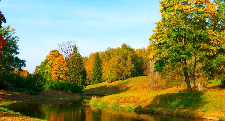 In den Naturparks in NRW treffen Besucher auf ein vielfältiges und wertvolles Naturerbe.