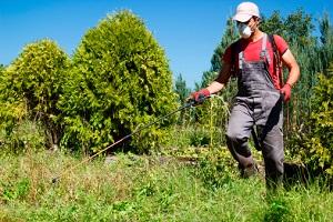 Pestizide - muss das sein? © ninikas/iStock/Thinkstock
