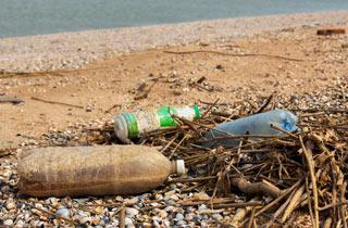 Umweltbildung mit Schülerlabor OPENSEA auf Helgoland