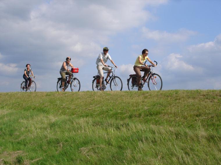 Die Elbelandschaft ist wichtig für die biologische Vielfalt und außerdem ein tolles Naherholungsgebiet