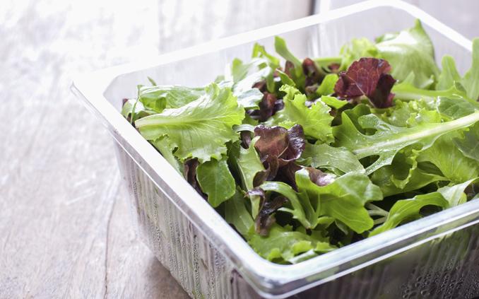 Bakterien im Salat