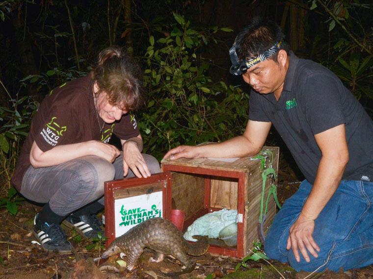 Erfolgreiche Wiederauswilderung von 93 Tieren in Vietnam