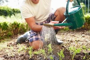 Gärtnern mit Freude © monkeybusinessimages/iStock/Thinkstock