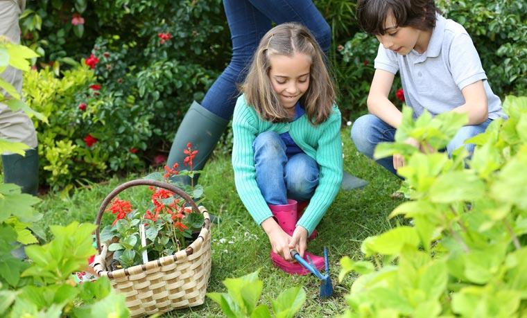 Capri-Sonne Bio und ?Dein SPIEGEL? suchen beim diesjährigen Schulgartenwettbewerb Deutschlands beste Nachwuchsgärtner.