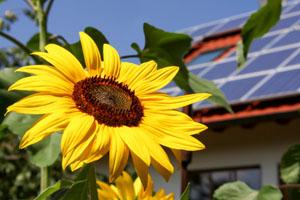 Auch Eigenheimbesitzer sollen jetzt tief in die Tasche für den eigenen Solarstrom greifen © Marina Lohrbach/ iStock/ Thinkstock