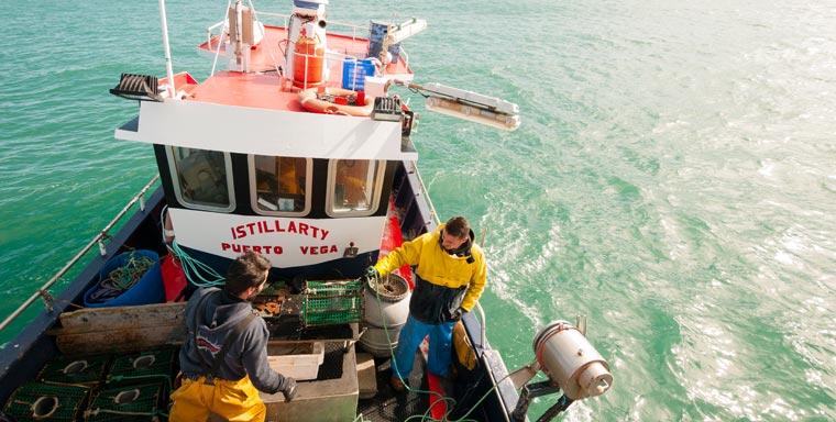 An der spanischen Atlantikküste ist jetzt zum ersten Mal eine Oktopus-Fischerei zertifiziert worden.