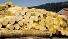 Holzverbrauch zu hoch