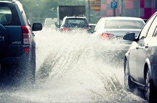 Mit Stadtgrün dem Starkregen trotzen