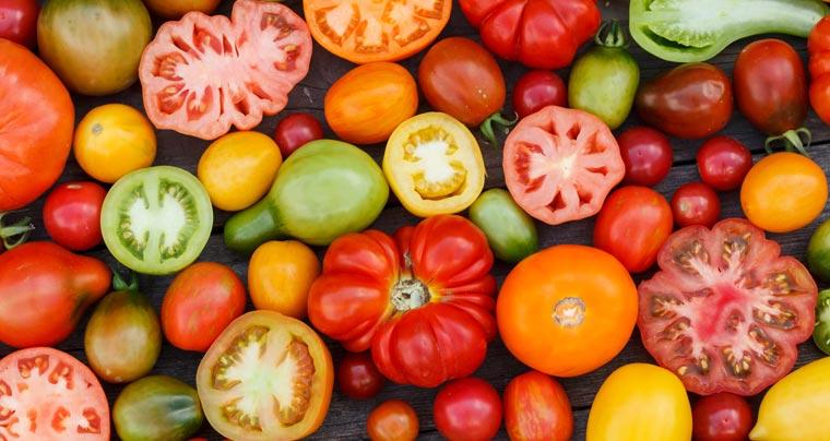 Es klingt ein bisschen wie ein Scherz, ist aber absolut ernst gemeint: US-amerikanische Forscher haben herausgefunden, wie sich Strom aus Tomaten erzeugen lässt.