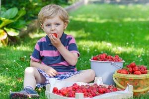Früchte sind lecker! © romrodinka/iStock/Thinkstock