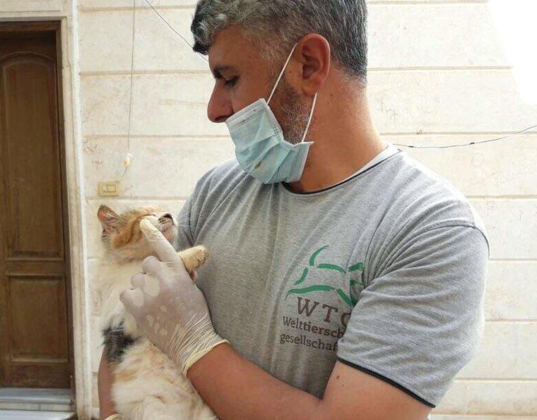 Tierschutz in Syrien: Dr. Mohamad Youssef kümmert sich um verletzte und kranke Tiere
