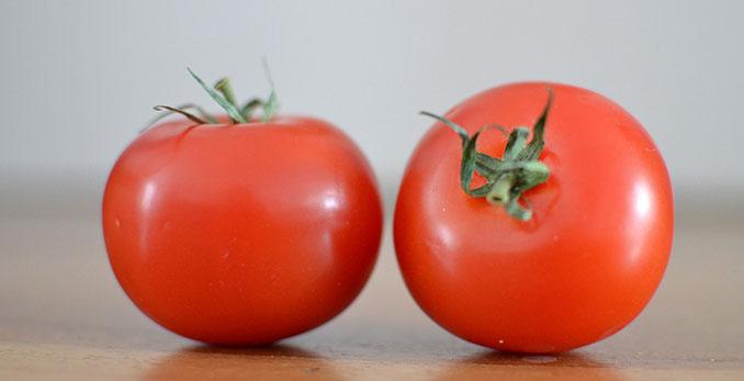 Neue Methode um Tomaten frisch und saftig zu importieren entdeckt