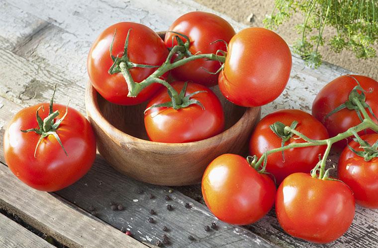 Patent fuer Tomaten