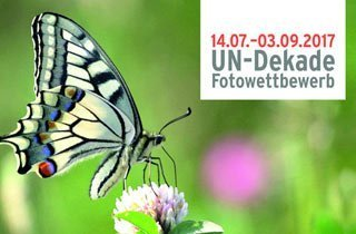 Biodiversität fotografisch festhalten