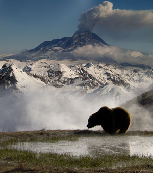 Grizzly-Spa am Fuße des Vulkans: Nach erfolgreicher Lachsjagd genießt Meister Petz gern ein Dampfbad in den heißen Quellen rund um den Feuerberg © ZDF / Igor Shpilenok