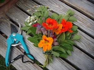 Gartenpracht für jeden! © Christine Leyermann/Green City e.V.