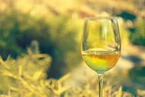Das Weinbaugesetz wird geändert. © saquizeta/iStock/Thinkstock