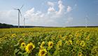 EU risikiert atomare Schäden für die Umwelt