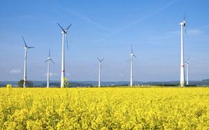 Geräusche von Windparks stellen keine Belästigung dar © elxeneize/ iStock/ Thinkstock