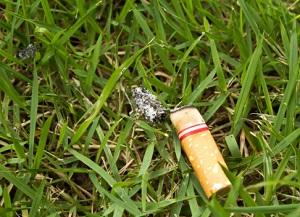 Zigarettenstummel gehören in den Müll! © Rutchapong/iStock/Thinkstock