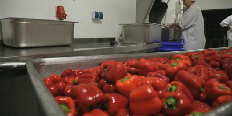 Im letzten Jahr gewann den Wettbewerb unter anderem die biond GmbH in der Kategorie Gastronomie