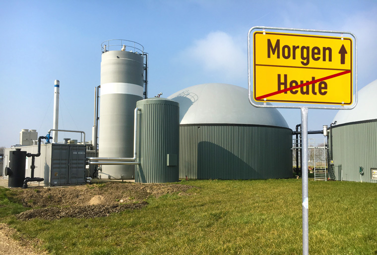 Die Zukunft der Bioenergie