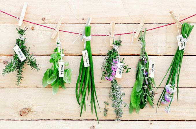 Kräuter sind nicht nur für die Küche geeignet © foodandstyle (iStock / thinkstock)