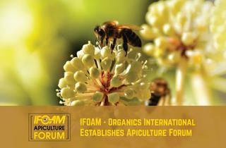 Neues Forum für Öko-Imkerei gegründet