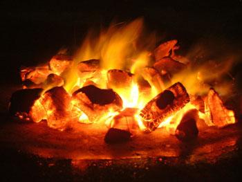 Kohle: Das Beste für Gemüse und Fleisch zur Grillzeit. CO2-neutral für doppelten Genuss ©iStockphoto