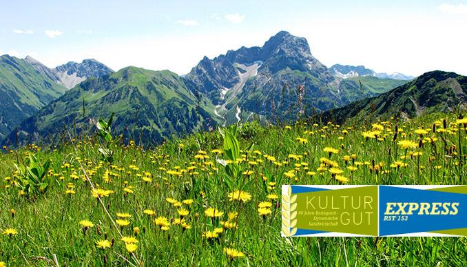 Saatgut beschert uns eine Pflanzenvielfalt die jetzt sogar von der UNESCO zum Kulturerben ausgezeichnet wurde. Foto: Erich Keppler_pixelio.de