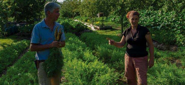 Charles und Perrine Hervé-Gruyer betreiben sehr erfolgreich in der Normandie die Farm Bec Hellouin nach dem Prinzip der Permakultur.