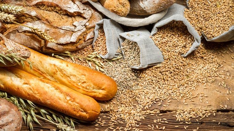 Zöliakie, Übersäuerung des Körpers, Diabetes ? Weizen wird mit allerlei Krankheiten und Unverträglichkeiten in Verbindung gebracht und genießt derzeit einen schlechten Ruf