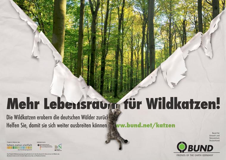 Das Projekt Wildkatzensprung des BUND will ein deutschlandweites Wäldernetz schaffen