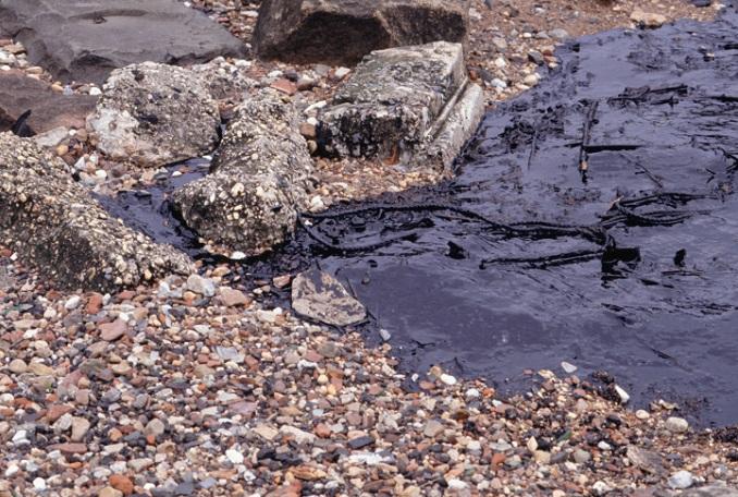 Ölunglück Exxon Valdez