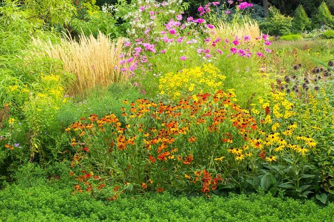 Die Artenvielfalt der Natur © eyetronic - Fotolia.com