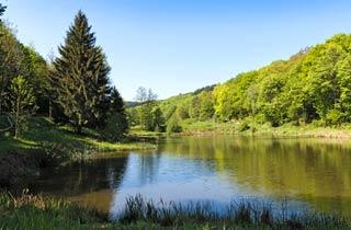 Mehr Naturschutz in Hessen